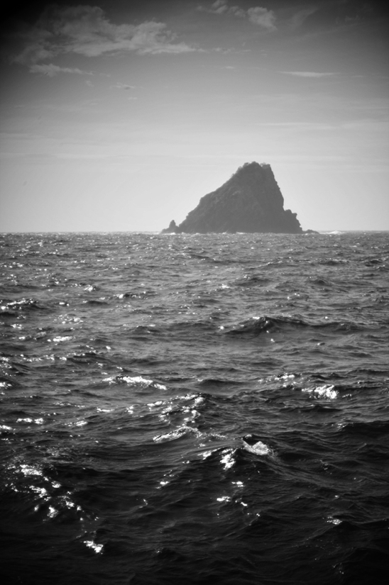 32_napier_island_DSC_2043