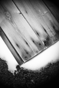 wood_joh_9856