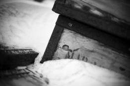 box_joh_1191